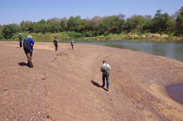 Team fieldwalking along the Gambia River, Senegal. (Eleanor Scerri / Max-Plank Institute)
