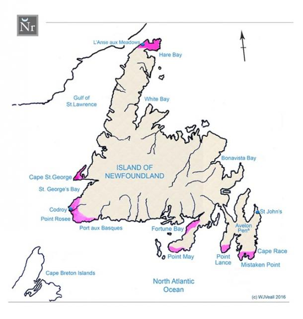 FIGURE 1:  Map of the Island of Newfoundland recording how satellite scanning revealed inscriptive material and imagery suggesting Viking activity having taken place in more than just one center.