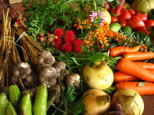 While the first crops appear to have been grains, people were first gathering and later cultivating vegetables, fruits, roots, tubers, nuts and seeds.