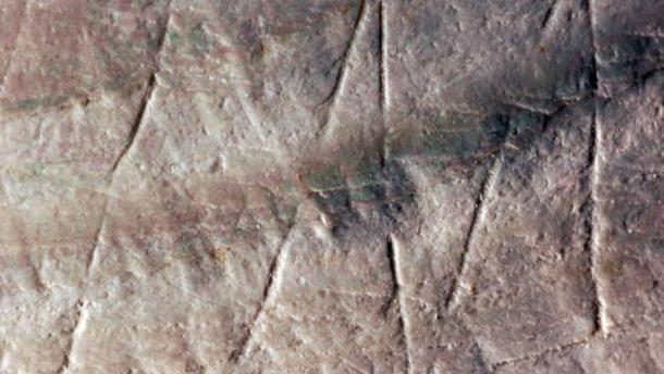 Detail of the engraving on a fossilized Pseudodon shell from the Trinil site in Indonesia