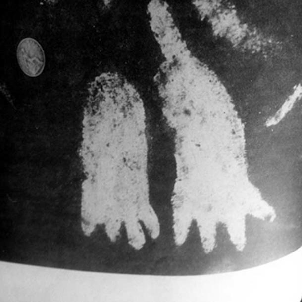 The four-toed footprints etched onto the surface of the Cochno Stone.