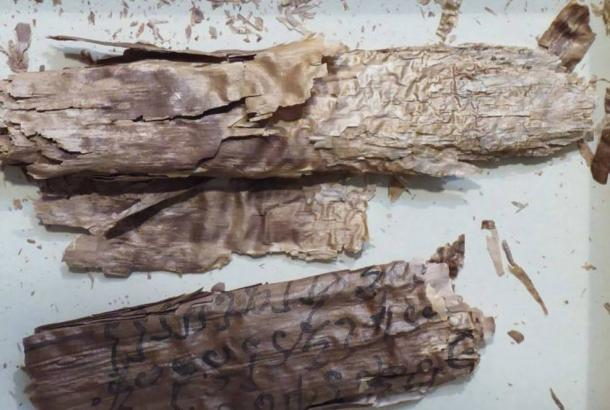 The exceptionally fragile birch bark scrolls being studied