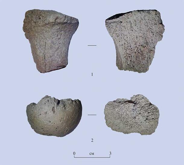Two fragments of bones found on Area 2 of Tuyana site. Image: Evgeniy Rogovskoi