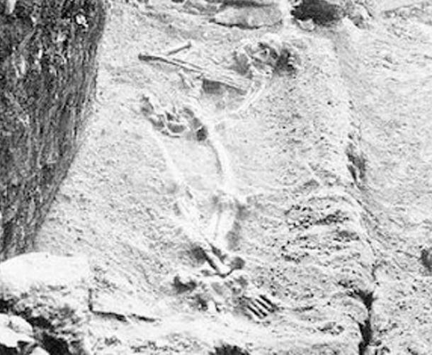 The Adena Giant Revealed: Profile of Prehistoric Mound Builders Gigantic-skeleton