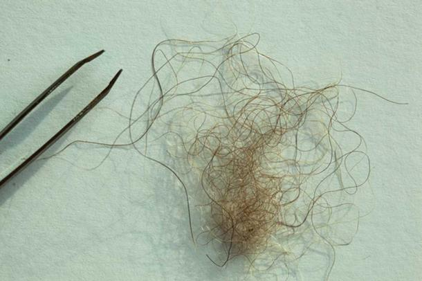 "A hair sample from a purported Yeti in Nepal. The hair was said to have come from a Yeti that a Jesuit priest spotted in the mountains in the region in the 1950s, according to producers for Icon Films' ""YETI OR NOT"" TV special, which aired on Animal Planet in 2016. (Image: Icon Films Ltd.)"