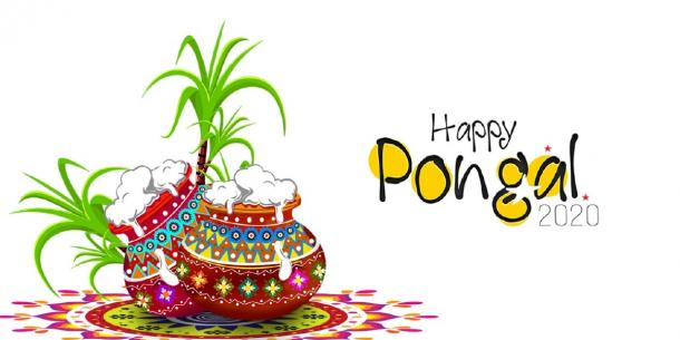 Happy Pongal! (avs / Adobe stock)