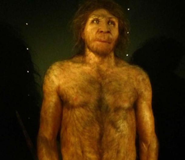Stone Age H. heidelbergensis adult male reconstruction. (Dbachmann / CC BY-SA 4.0)