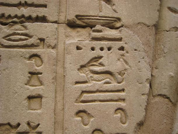 Egyptian hieroglyph of a hare, which symbolized life. (Dudubot / CC BY-SA 2.0)