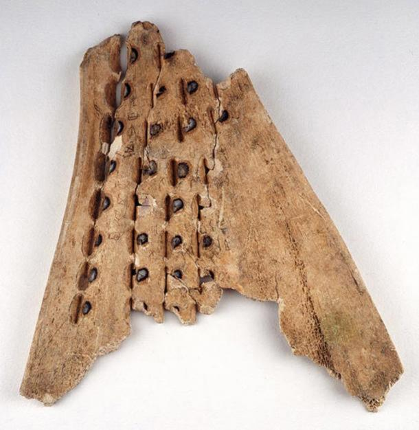 Holes drilled into an oracle bone.