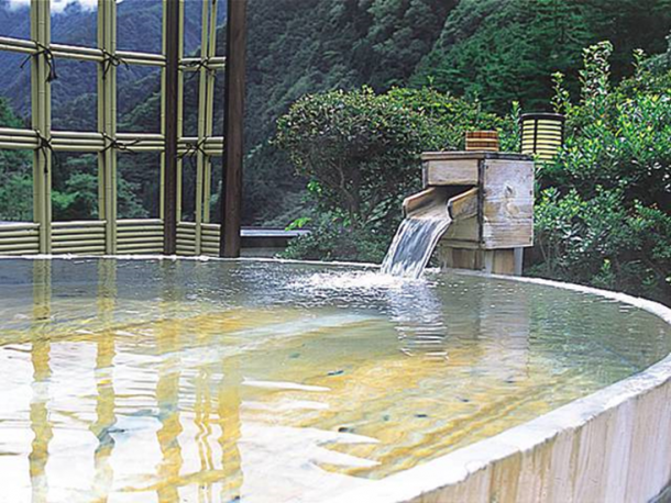 The hot spring in the hotel