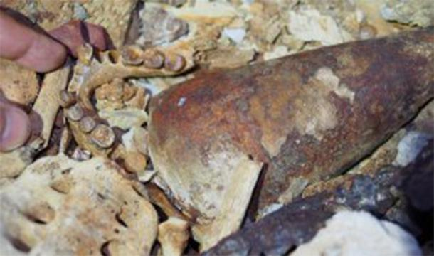 Human bones, a sea shell, and currency blades found in the cave burial. (NOT Engineers)