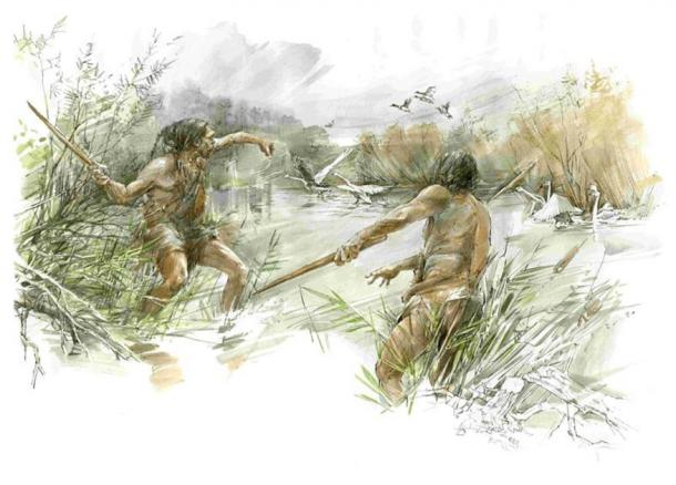 The ice age hunters may have used the throwing stick / 'killing stick' to hunt water birds. (Eberhard Karls Universität Tübingen)