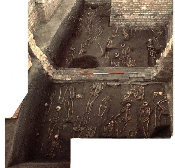 Image showing the remains of numerous individuals who lived in medieval Cambridge unearthed on the former site of the Hospital of St. John the Evangelist, taken during the 2010 excavation. (Cambridge Archaeological Unit / St John's College)