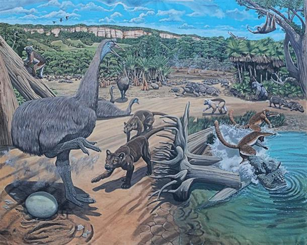 Research has found that when early Holocene humans first lived on the island, it was also inhabited by a wide range of now extinct megafauna, including the giant sloth, elephant birds, giant tortoises and pygmy hippos. (Image: ©Julian Hume)