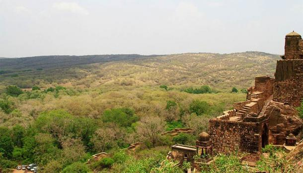 Nestled within the surrounding forest, Ranthambore Fort enjoys incredible views of the forest terrain. (Shaz.syed13 / CC BY-SA 4.0)