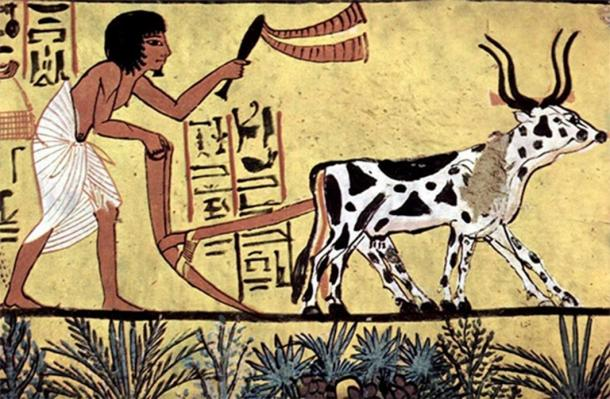 Ancient agriculture. Mural in the burial chamber of Sennedjem (circa 1200 BC) (Public Domain)