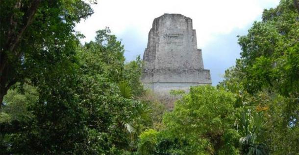 A temple rises above the rainforest at the ancient Maya city of Tikal. (David Lentz)