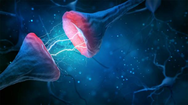 A picture of a brain synapse and neuron and the electromagnetic signals exchanged, which is somehow the source of human consciousness. (k_e_n / Adobe Stock)