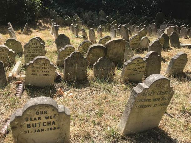 Surviving gravestones from Hyde Park Pet Cemetery. (photograph by E. Tourigny, taken with permission from The Royal Parks/Antiquity)