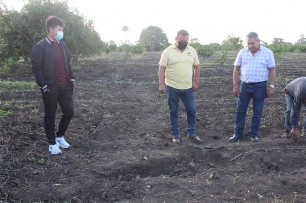 The farmers discovered the statue of a Mesoamerican woman in the Huasteca region in Mexico by chance when tilling the soil. (María Eugenia Maldonado Vite / INAH)