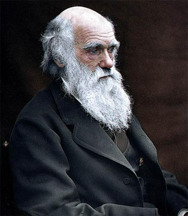 Charles Darwin. (Julius Jääskeläinen/CC BY 2.0)