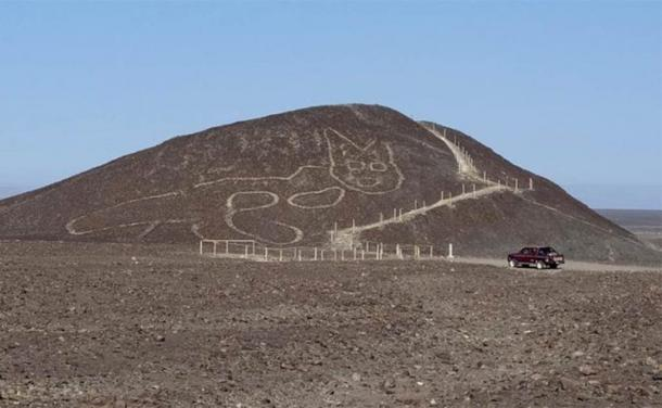 Peru unveils giant cat etching at famous Nazca site
