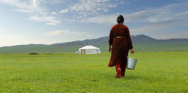 Farmer carrying a bucket of milk after milking a cow in the grasslands of Mongolia. (MICHEL /Adobe Stock)