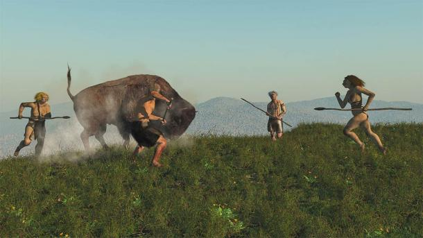 Hunters and gatherers ate some meat and a lot of vegetable foods. (nicolasprimola / Adobe Stock)