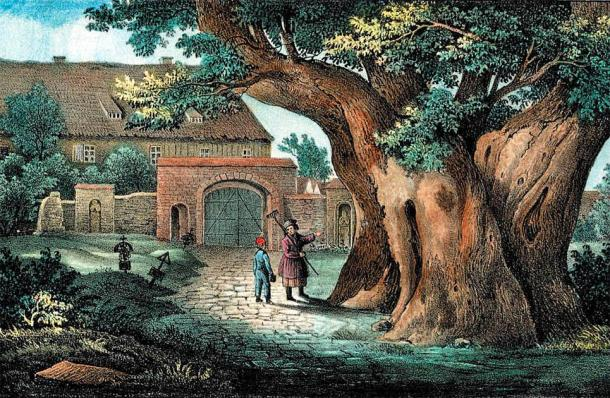 The linden tree is strongly connected with souls and the god Veles in ancient Germanic myth. (Carl Wilhelm Arldt / Public domain)