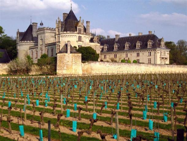 The famous vineyards of Château de Brézé. (98octane / CC BY-SA 3.0)