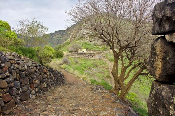 An ancient road to the ruins in Gamla, Israel, where artifacts were stolen that were later reported as cursed and returned. (Robert / Adobe Stock)