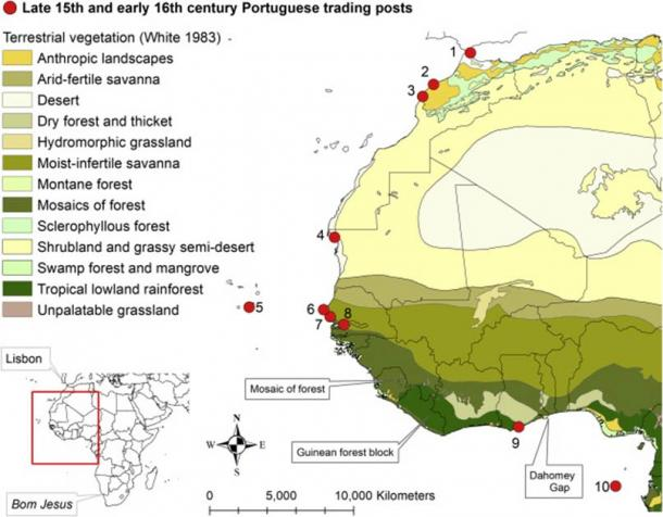 Terrestrial vegetation and Portuguese trading posts in the late 15th and early 16th century. (de Flamingh et al./ Current Biology 2020)