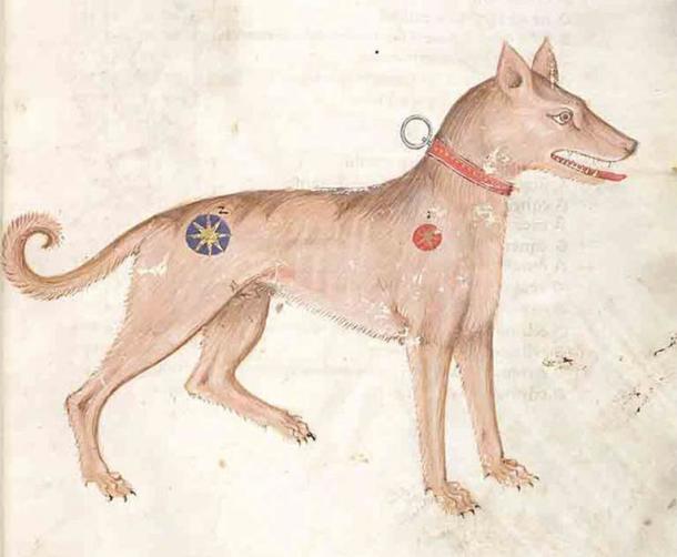 Saurr became kind in 11th-century Trondheim. (Public domain)