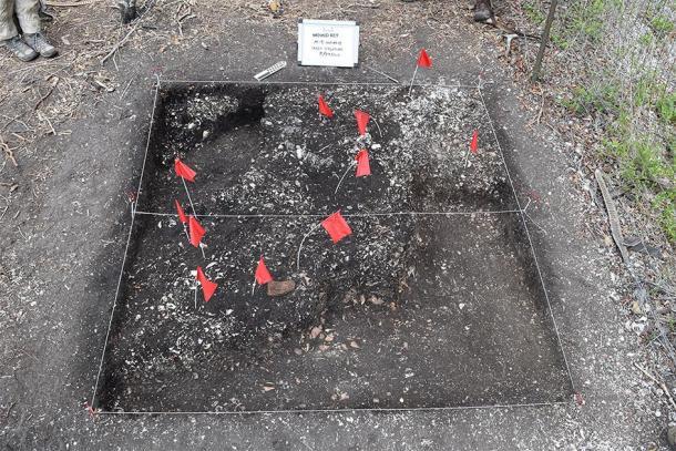 Los investigadores excavaron evidencia de la estructura del fuerte, que incluía el ejemplo más antiguo conocido del Nuevo Mundo de una mezcla similar al concreto llamada tabby. (Imagen: Amanda Roberts Thompson / Arqueología histórica)