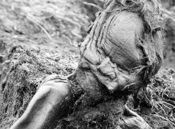 The body of the Grauballe Man, another famous bog body murder, when he was found. (Public domain)