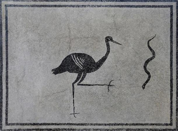 Black and white mosaic with stork and snake from the Villa della Pisanella at Boscoreale, third quarter of 1st century AD. (Carole Raddato/CC BY NC SA 4.0)