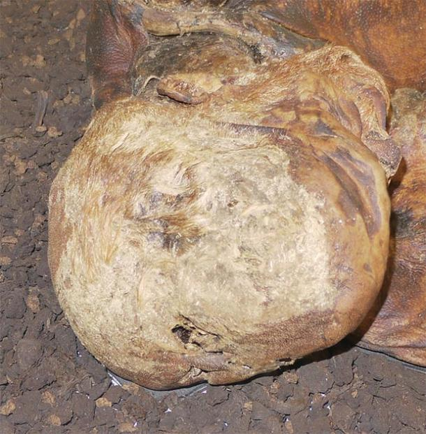 The top of the Lindow Man's head. The V-shaped cut can be seen at the lower center. (Geni / CC BY-SA 4.0)