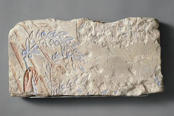 A further beautiful carving of the king's hand holding an olive branch under the rays of the Aten, from an Amarna talatat block. It shows in great detail the fingernails of the king, the roundness of the olives, and even how the Aten's rays travel through the individual leaves, first under, then above them, showing a great degree of sophistication. (Met Museum / Public domain)