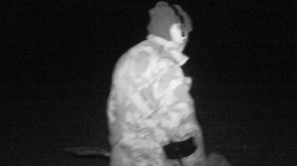 Infrared cameras catch a nighthawk in action.