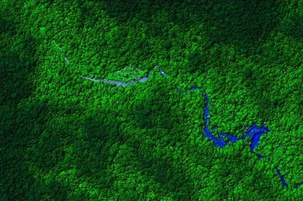 jungle of Honduras - Arqueólogos encuentran ruinas intactas en su búsqueda de la ciudad perdida del Dios Mono