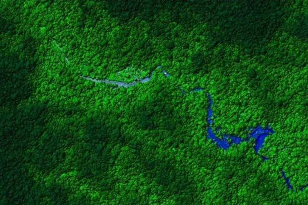 Ancient ruins have been found in the jungle of Honduras