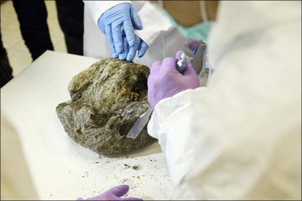 These laboratory pictures show skin and muscle tissue being extracted from the ancient creature Dina's remains.