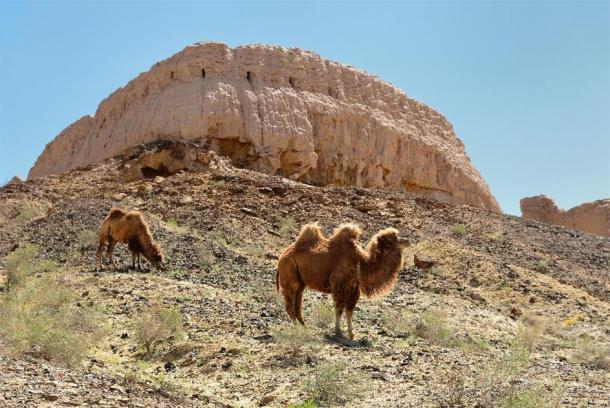 The largest ruins castles of ancient Khorezm – Ayaz - Kala, Uzbekistan. (Zaneta /Adobe Stock)