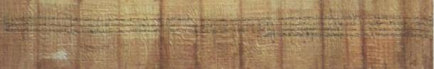 The rediscovered leather manuscript in the longest Ancient Egyptian text ever found, exceeding the length of the next longest text, an 8-foot long prenuptial agreemeent (pictured), by just 2 inches.