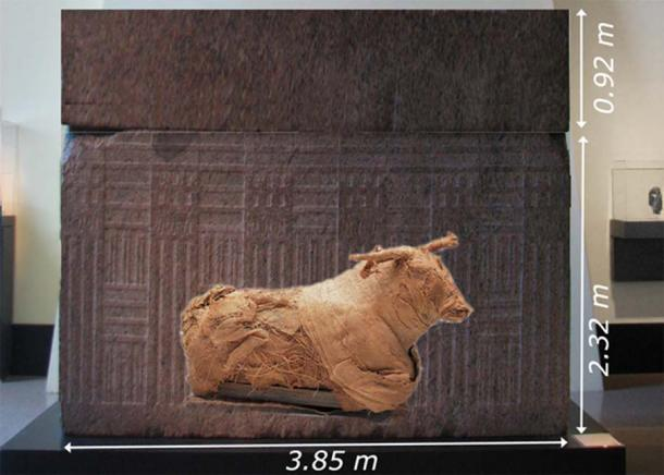 A little Photoshop to compare the size of a bull (which is about 2.3 meters long) and a Serapeum sarcophagus based on measurement by Linant-Bey. This is a typical bull mummy from Dynastic times. (soul-guidance.com)