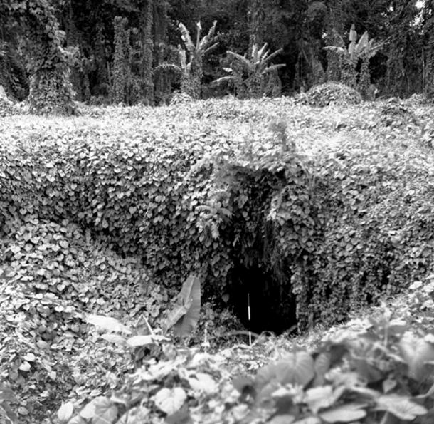 Entrance into the main shaft of the Falemauga Caves on Upolu island in Samoa. Photo taken 1957 by unknown photographer