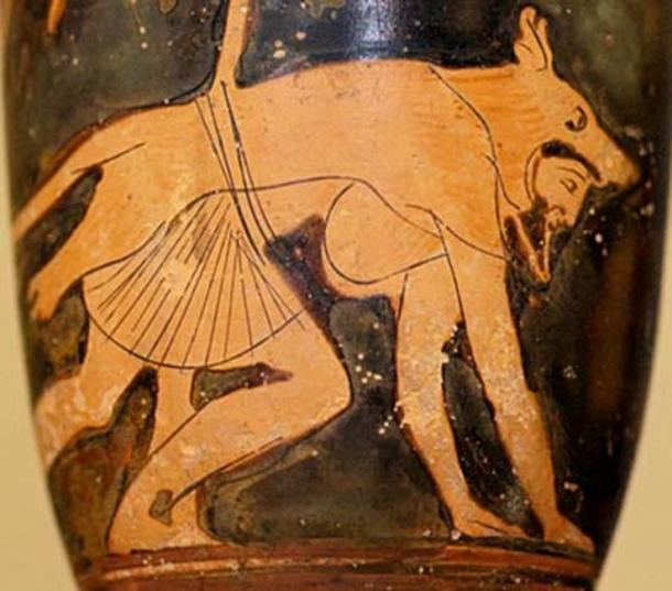 Depiction of a man wearing a wolf-skin (460 BC).