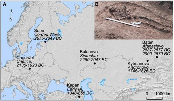 This map of Eurasia shows where and in which cultures the plague bacteria were found and dated; the inset show a burial from the Bulanovo site.