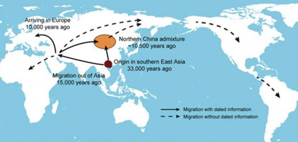 A proposed migratory history for domestic dogs across the world based on the evidence from the current study.