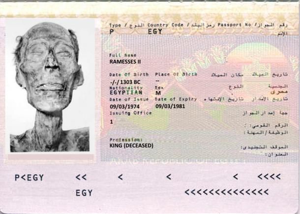 A mock up for the only mummy with a passport. Ramesses II